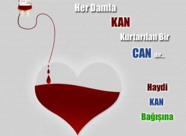 Kan Bağışının Önemi