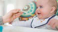 Bebekler için Ispanaklı Çorba Tarifi ve Faydaları!
