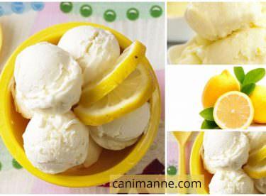 Yoğurtlu Limonlu Dondurma Pratik