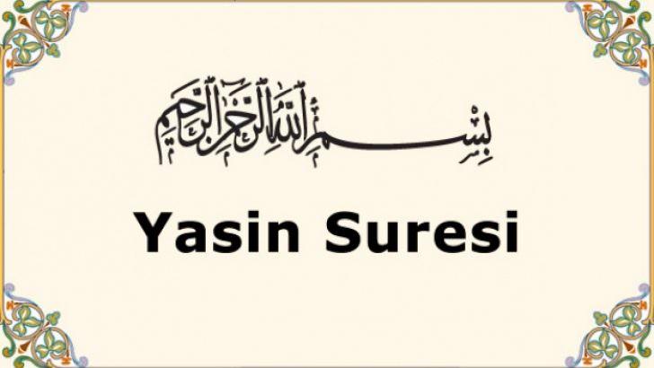 Yasin Okunuşu – Yasin'i Şerif Arapça ve Türkçe Okunuşu