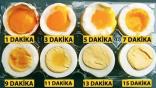 Yumurta Haşlama Süresi