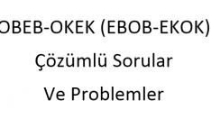 EBOB ve EKOK Problemleri