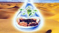 6 Ocak – 12 Ocak Enerji Tasarrufu Haftası!