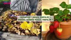 Kompost Nasıl Yapılır ? Doğal Gübre Yapımı